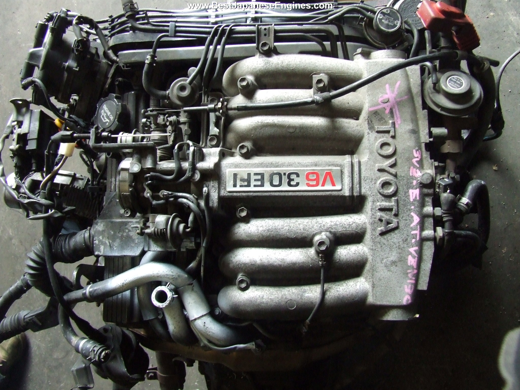 Toyota Pickup Engines For Sale  Toyota 22r  U0026 3vz Rebuilt